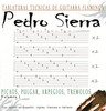 Thumbnail TABLATURAS TECNICAS DE GUITARRA PEDRO SIERRA.rar