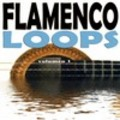 Thumbnail FLAMENCOLOOPS DE BULERIAS 120 AL GOLPE